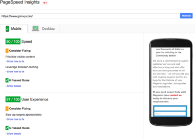 www.goivvy.com: 90+ Google PageSpeed Score for Mobile | Optmizing Magento Performance | Goivvy.com