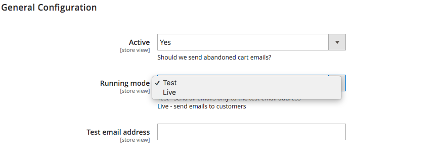 Abandoned Cart Email Configuration Page